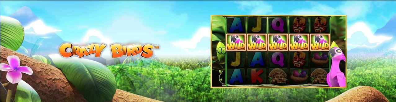 Crazy Birds ™ – Un nou super slot de la Admiral